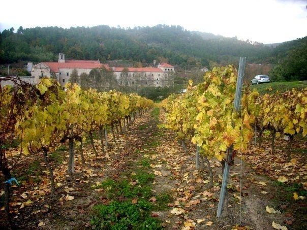San Clodio Monastery & Vineyards