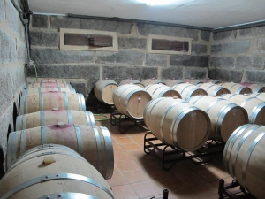 Adegas Ladairo - French oak barrels