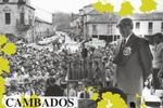 Albariño Wine Festival ,Cambados