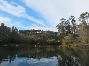 River Verdugo, near Arcade