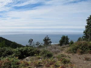 Typical Coastal Views
