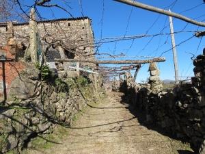 Typical Galician Lane!