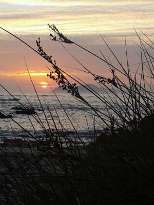 View of Cies Islands, Facebook winner Avelino Gil