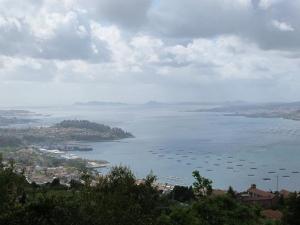 Vigo Estuary