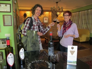 Wine Tasting, Ribeira Sacra