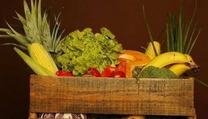 Miami Organic Farmers Market