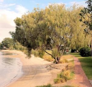 Beach at Harry Boyd Park Southport