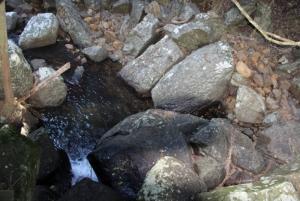 Mountain Rock Pool