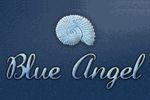 Blue Angel Villa