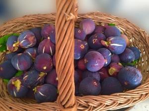 Amorgos Gastronomy Days 2017