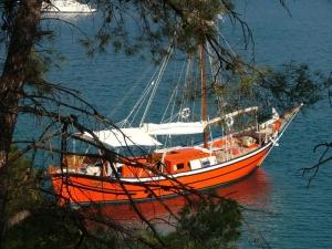Poros - coastline