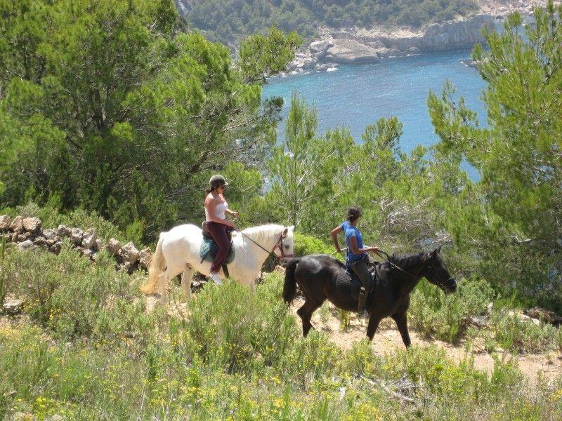 A serene horseback ride