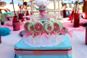Touches of Envy - Birthday Party for Girls