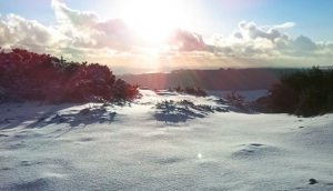 Dreaming of a Wight Christmas?