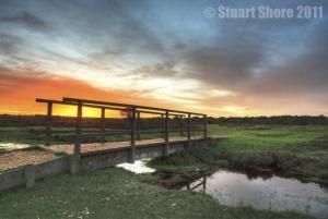 Copyright Stuart Shore, Wight Wildlife Photography