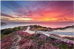 Places to See on the Isle of Wight