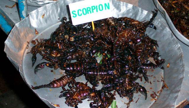 Maengpxng (Scorpions)