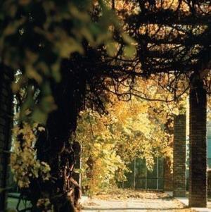 botanical gardens krakow 3
