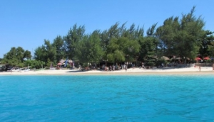 Close Encounters in the Gili Islands