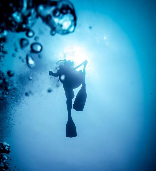 Diver in the deep blue sea - photo by Steve Woods Underwater Photography