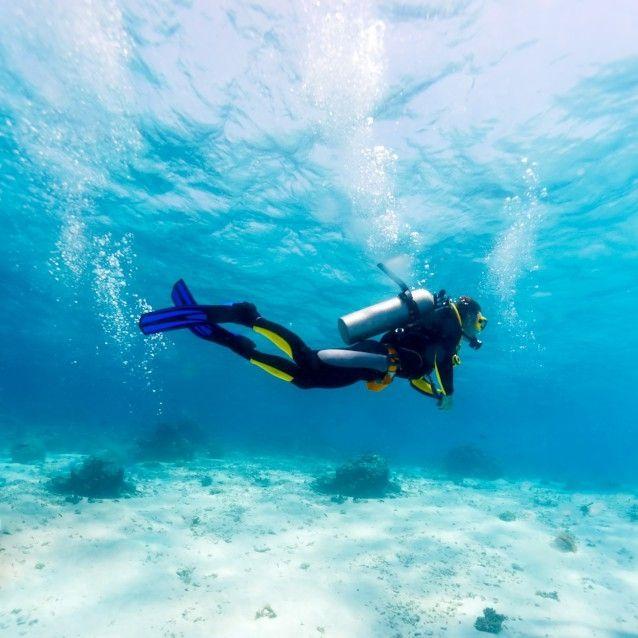 Scuba Dive the pristine reefs