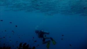 Aquaddiction Dive
