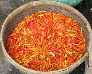 Basket of chilis
