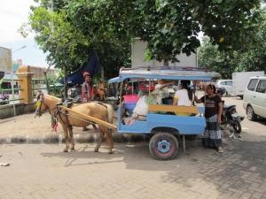 Cidomo at the market