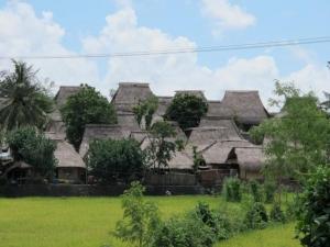 Sasak Village Rooftops