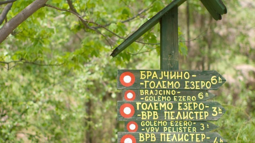 Brajcino Trails (photo by: Discover Brajcino)