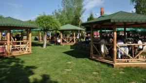 Ethno Restaurant - Vila Vesnica