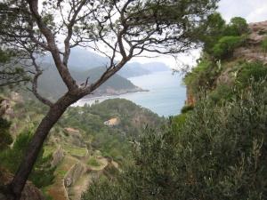 Mallorca coast near Banyalbufar