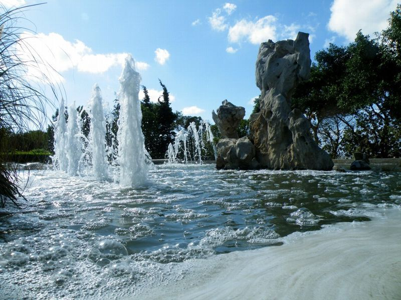 Serenity Gardens