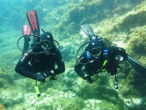 Dive Malta Dive Centre