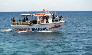 OrangeShark Diving Centres
