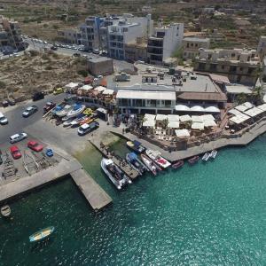 Seashell Dive Centre