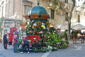 Flower vendor Valletta
