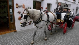 Take a horse driven carriage around Marbella