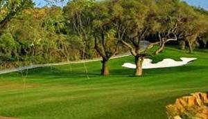 Elite Golf Services