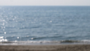 Hippopotamus Beach
