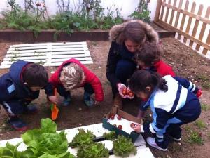 Ecological gardens