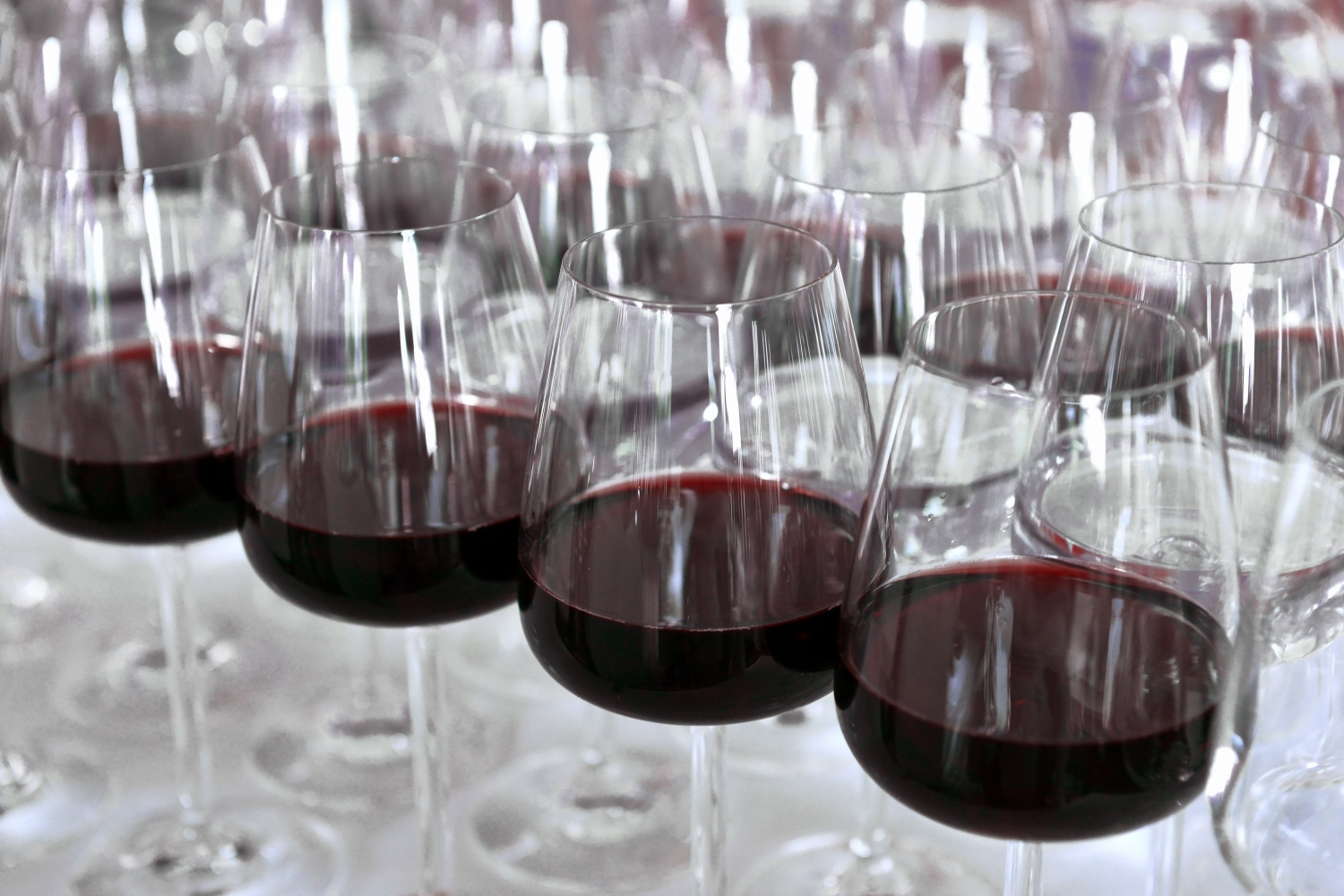 1 Day 'Introduction to the World of Wine'