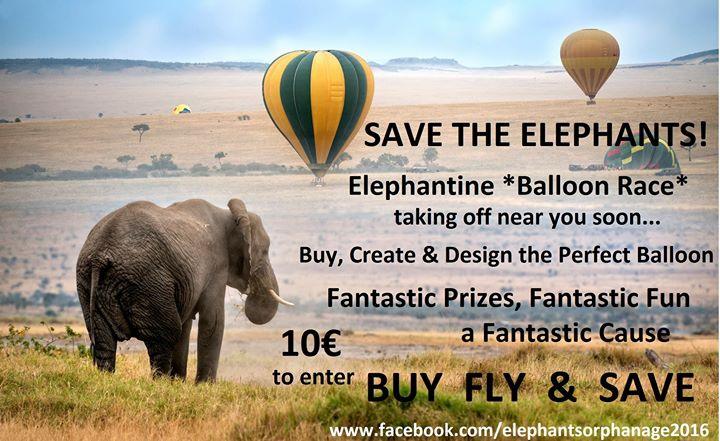 Elephants Balloon Race