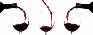 1 Day 'Introduction to the World of Wine' at La Sala