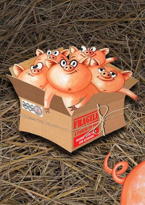 Book launch: A Parcel of Pigs
