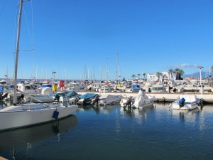 Marbella harbour in January