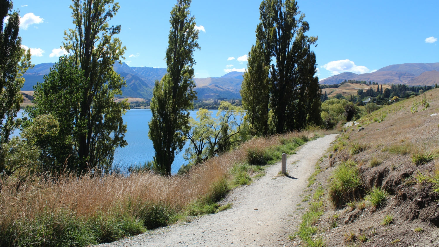 Queenstown Walks