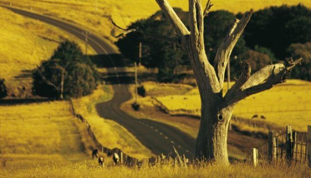 Melbourne Wine - A Tour of Victoria