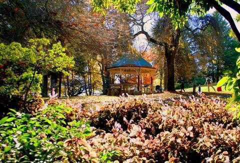 Wombat Hill Gardens, D Sherwin photo