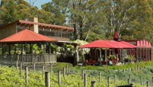 Brandy Creek Wines & View Cafe